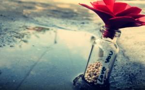 每日一句经典:正在经历的孤独,我们称之为迷茫。经过的那些孤独,我们称之为成长。