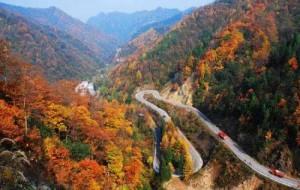 每日一句经典:不要停在平原,不要登上高山,从半山上看,世界显得最美。 ——尼采《世界的智慧》