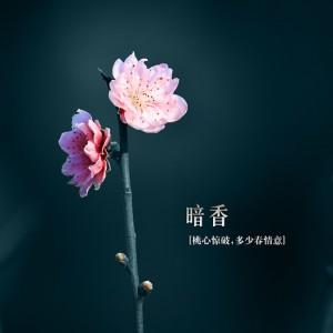 每日一句经典:成熟是一个很痛的词,它不一定会得到,却一定会失去。