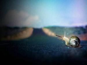 每日一句经典:如果无能为力,那就顺其自然。送给在此刻纠结的你。