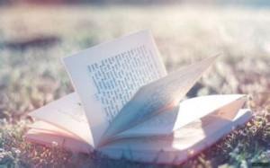 每日一句经典:缘分是本书,翻的太快会错过,而认真读会让人泪流
