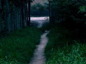 每日一句经典:有时候跑得太快,就会跑掉灵魂。