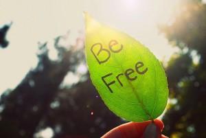 每日一句经典:人只因承担责任才是自由的。这是生活的真谛。 --卡夫卡